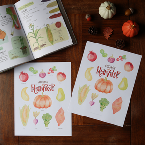 Autumn Harvest Art Posters