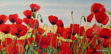Julie's Poppies