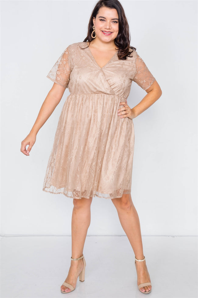 Taupe Plus Size Lace Fit & Flare Dress