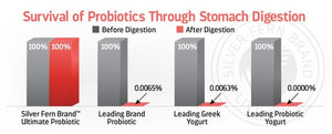 Ultimate Probiotic - 100% Survivability Guaranteed