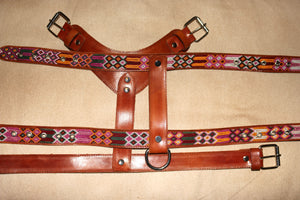 X- Large Harness