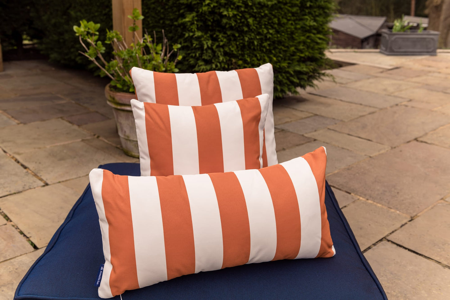 Luxury Cushion in Orange  Candy stripe Bean Bag Cushion armadillosun