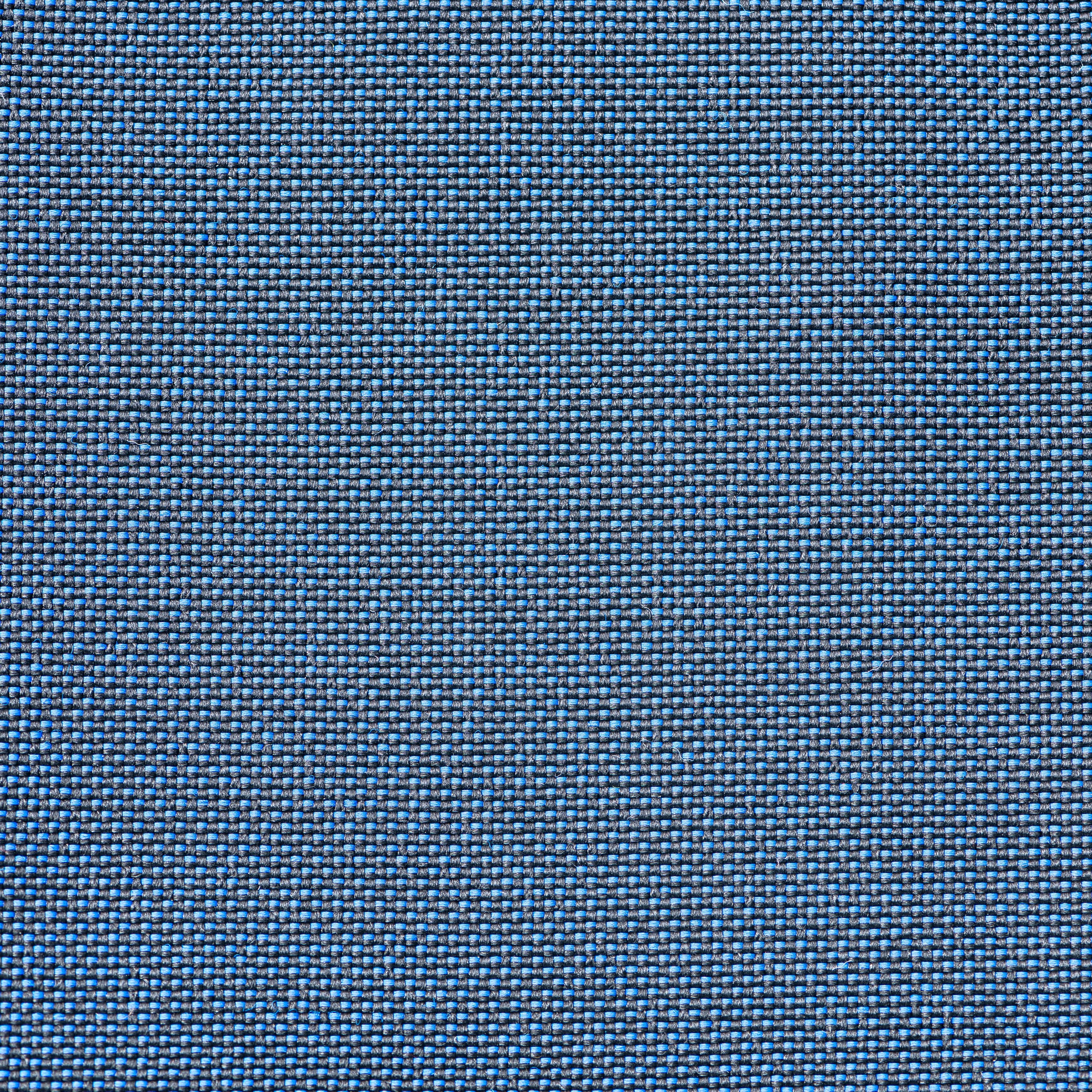 Armadillo Sun Fabric Swatches - Navy