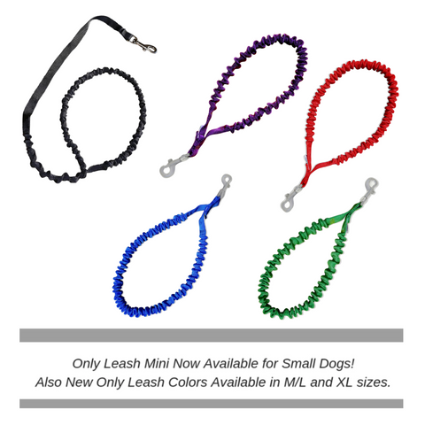 SHOP ONLY LEASH COLLECTION ALL