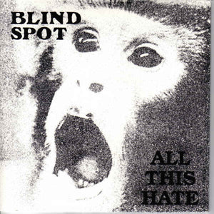 Blind Spot - All This Hate