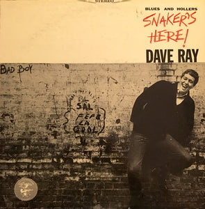 Dave Ray - Snaker's Here