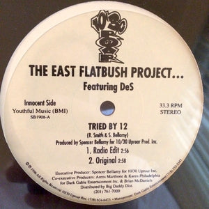 The East Flatbush Project - Tried By 12