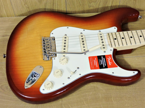 Fender American Professional Stratocaster ASH Body SSB MN