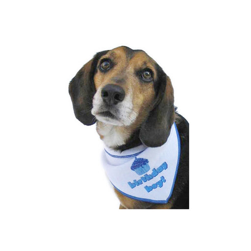 Birthday Boy Dog Bandana - The Bark Hub