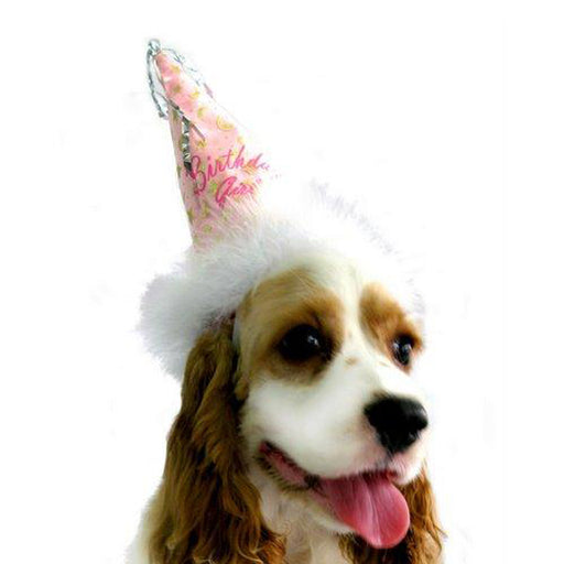 Birthday Girl Party Hat - The Bark Hub
