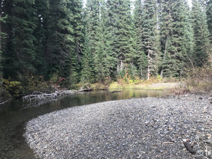 Kettle River BC Gold Claim For Sale