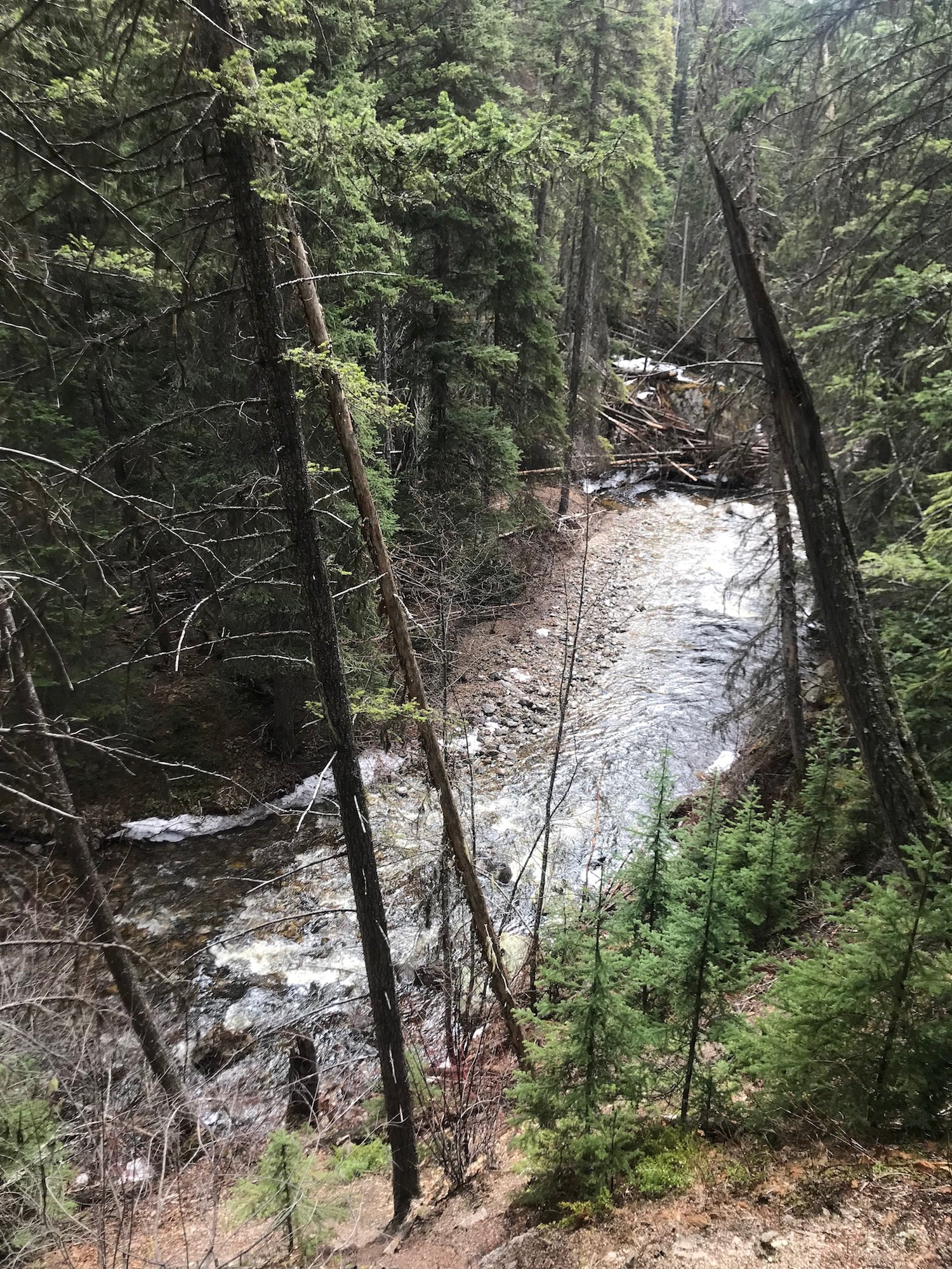 Trout Creek BC Bedrock Gold Claim