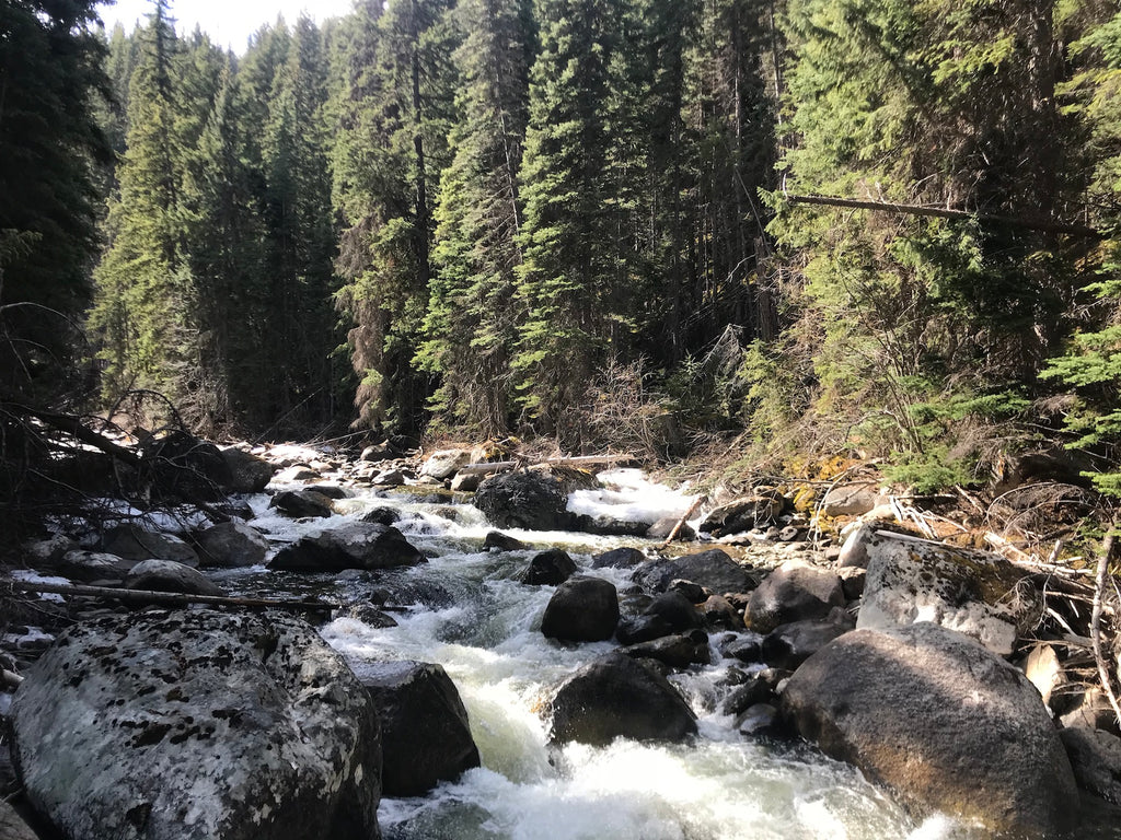 Cadwallader Creek BC Gold Claim For Sale