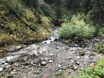 Sugar Creek BC Gold Claim For Sale