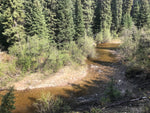 Umiti Creek BC Gold Claim For Sale