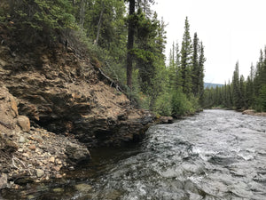 McDame Creek Placer Claim for Sale