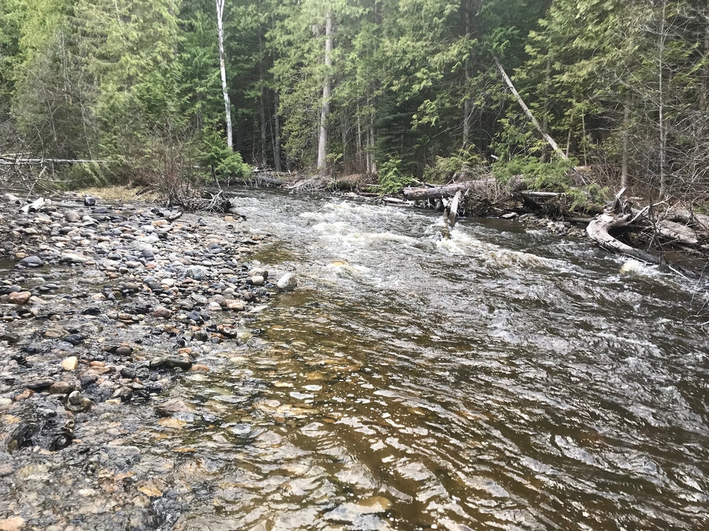 Harris Creek BC Gold Claim For Sale