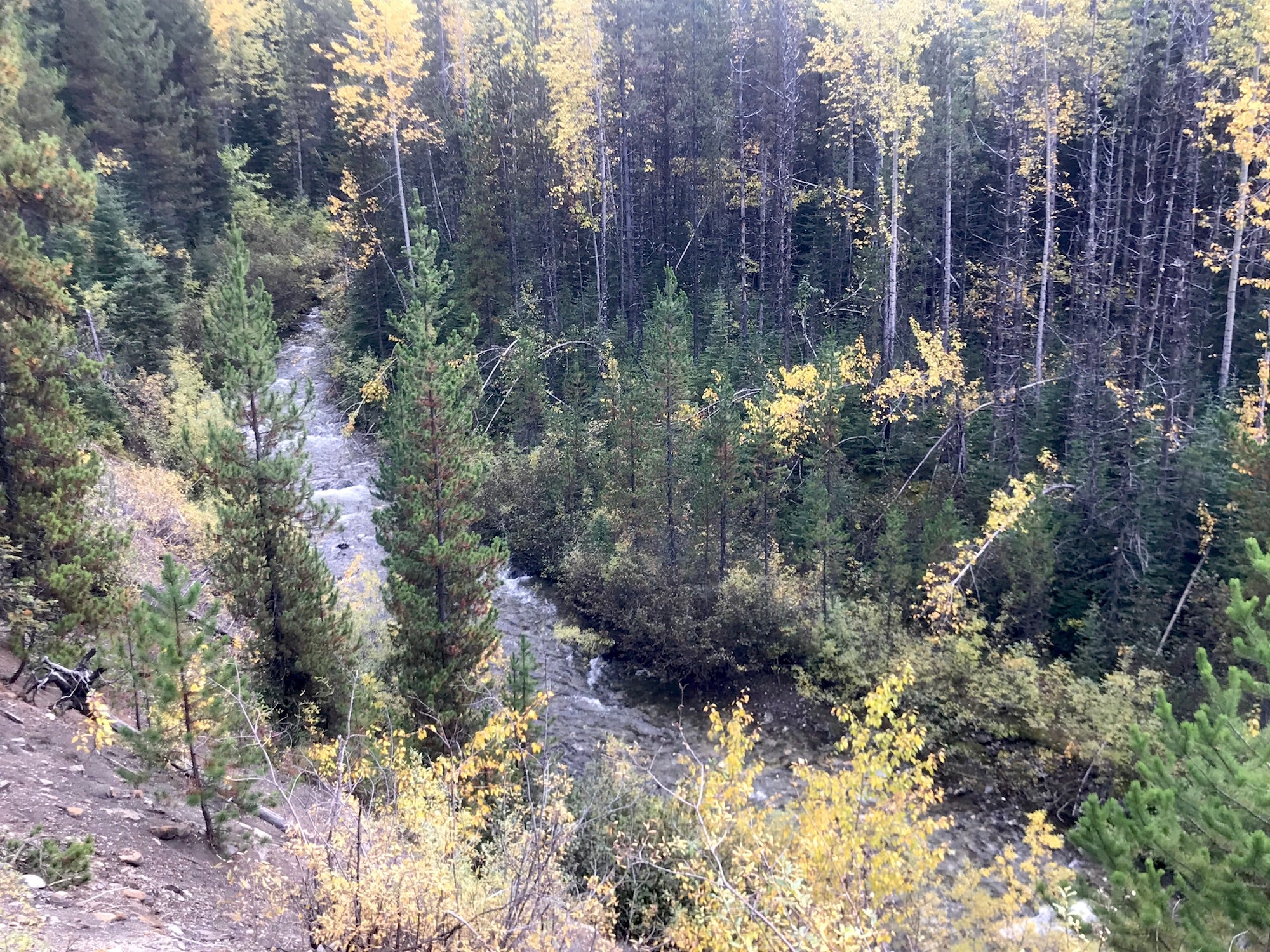 Cariboo BC Gold Panning Claim For Sale