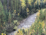 Jack of Clubs Creek BC Gold Claim For Sale