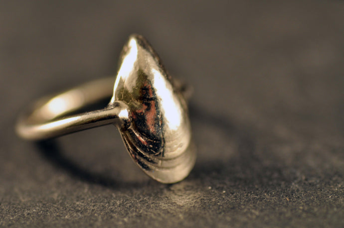 Plain ring with mussel