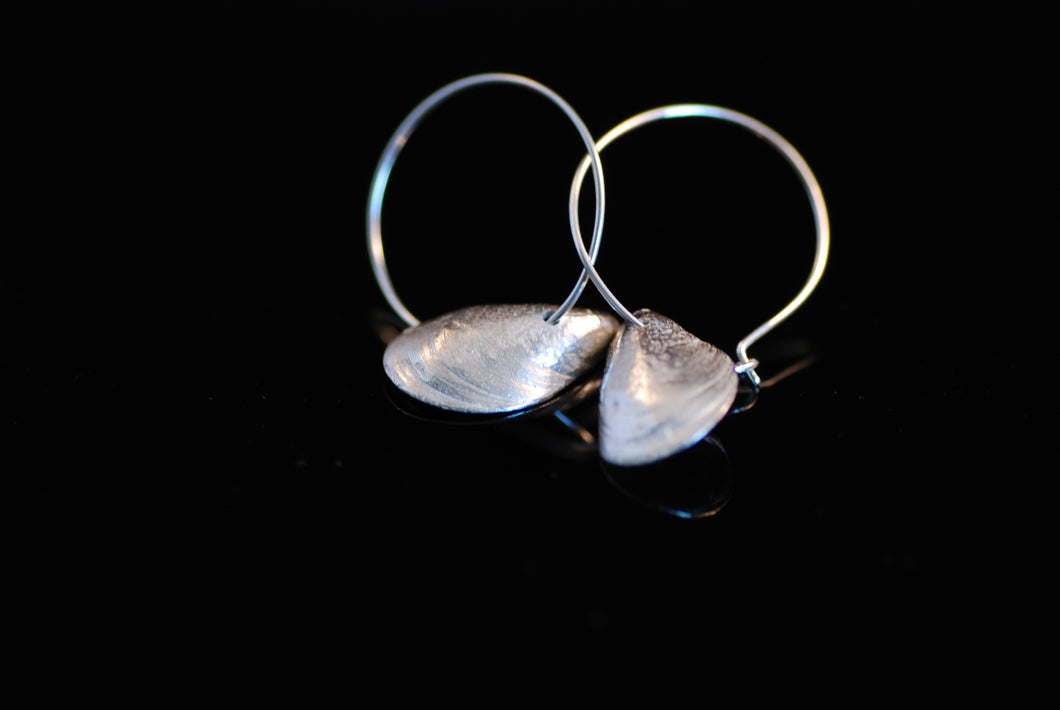Enkla blåmusslor som örhängen / Plain mussel as earrings