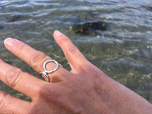 Ring av ringar / Ring of rings