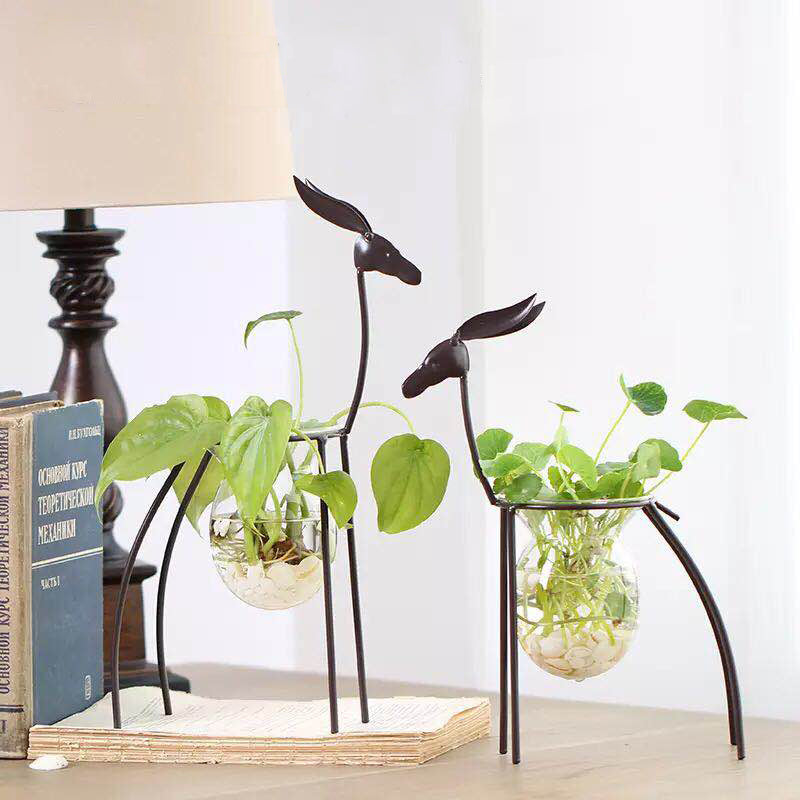 Creative Iron Craft Hydroponics Plant Decoration