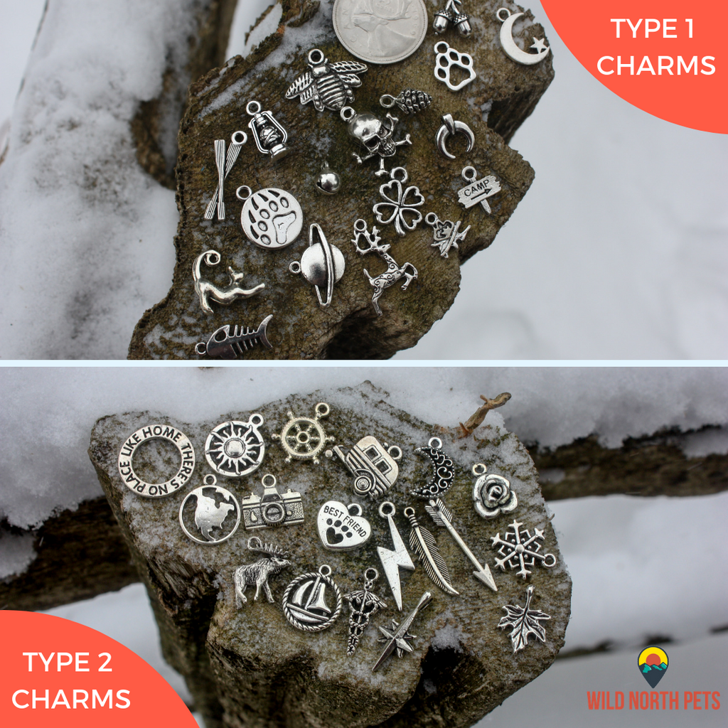 Wild and Free Pet Tag