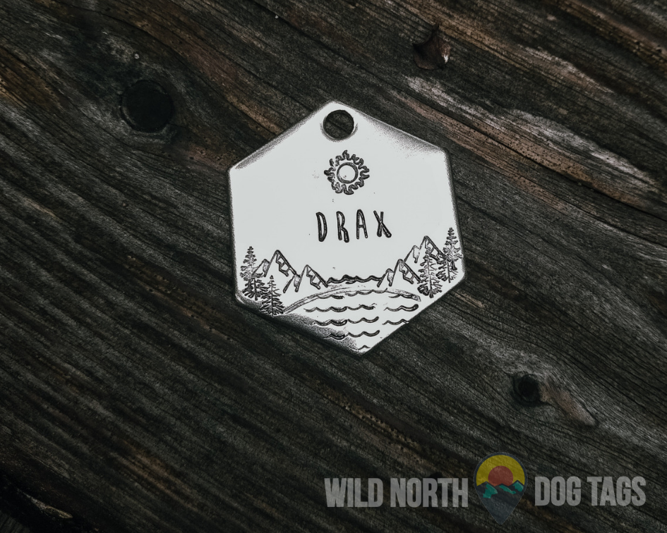 Adventure Awaits Athena Pet Tag