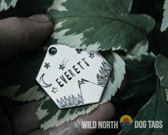 Reach the Summit with Odin Pet Tag