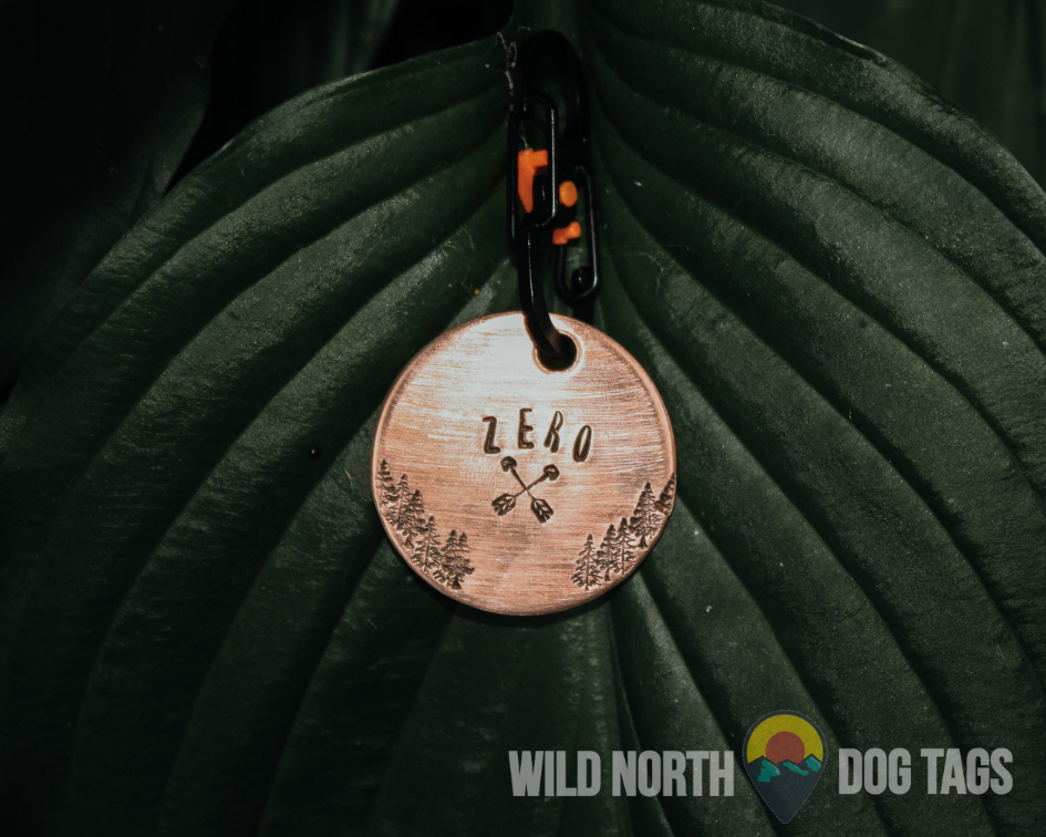 Walk in the Woods with Zero Pet Tag