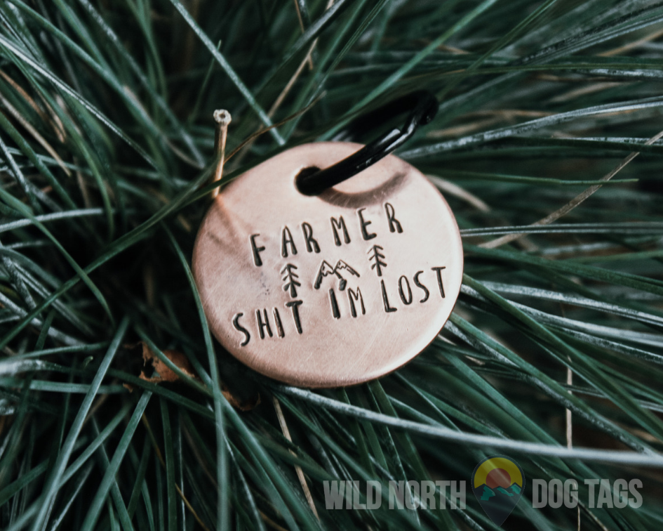 Get Lost with Nova Pet Tag