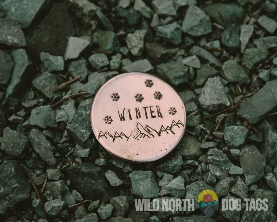 Winters in Whistler with Finnigan Pet Tag