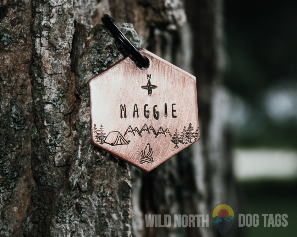 Discover the PNW with Lexi Pet Tag