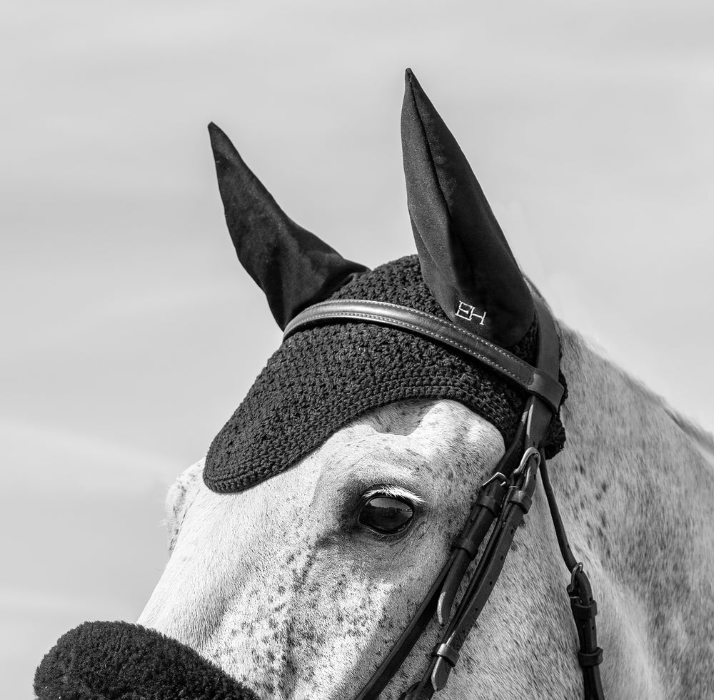 luxury fly veil lifestyle evolution horse black