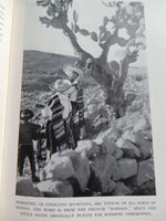 1944 Mexico Magnetic Southland Aboriginal Indians Pyramid Oaxaca Acapulco Photos
