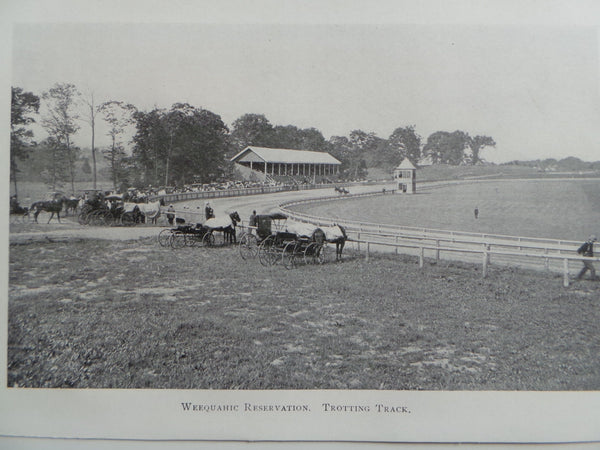 1901 WEEQUAHIC RESERVATION Horse Trotting Track Photo Essex County New Jersey