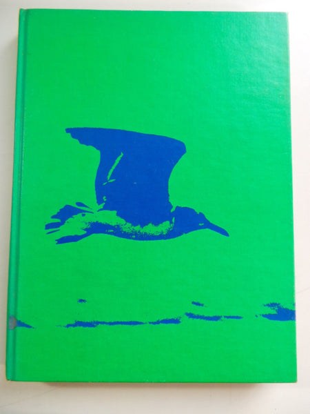 1973 NICHOLS SCHOOL Buffalo New York Original YEARBOOK Annual Verdian