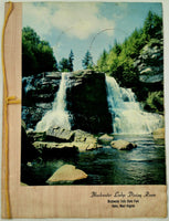Vintage Menu BLACKWATER LODGE DINING ROOM Falls State Park Davis W. Virginia