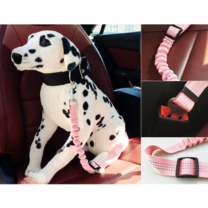 K9CARE™ Approved Adjustable Seat Belt