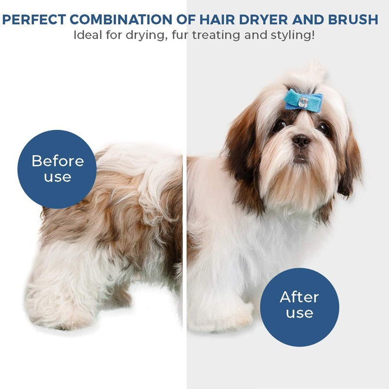 2 in 1 Pet Hair Dryer
