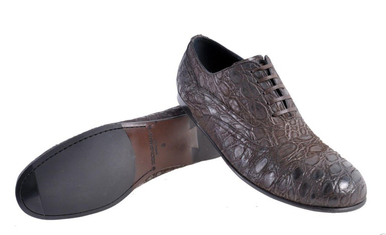 NEW DOLCE & GABBANA BROWN CROCODILE LEATHER SHOES for MEN