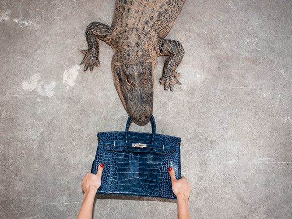 Gator Birkin Hands by Tyler Shields, Digital Print, 2012
