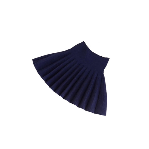 Recess Pleated Skirt