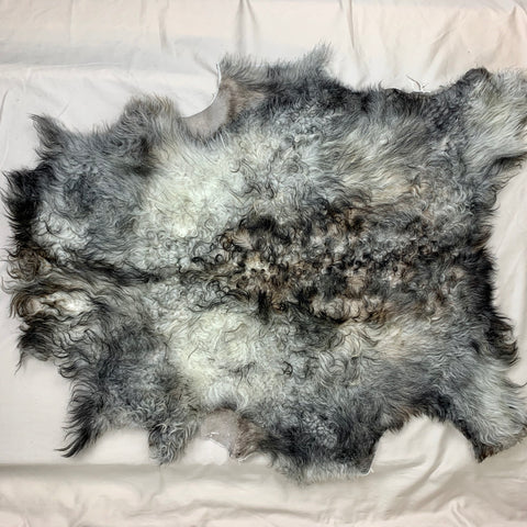 Icelandic Shearling Sheepskin Pelt - gray 34 x 23 inches - home decor or rug