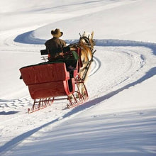 Load image into Gallery viewer, Sheep Milk Soap - Dashing Through the Snow Bar - Handmade Bars - Cold Process - Palm Oil Free