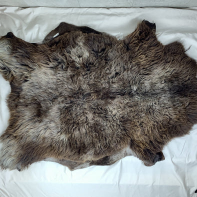 Mixed Breed Sheepskin - large dark brown gray 42 x 28 inches - home decor or rug - Copia Cove Icelandic Sheep & Wool