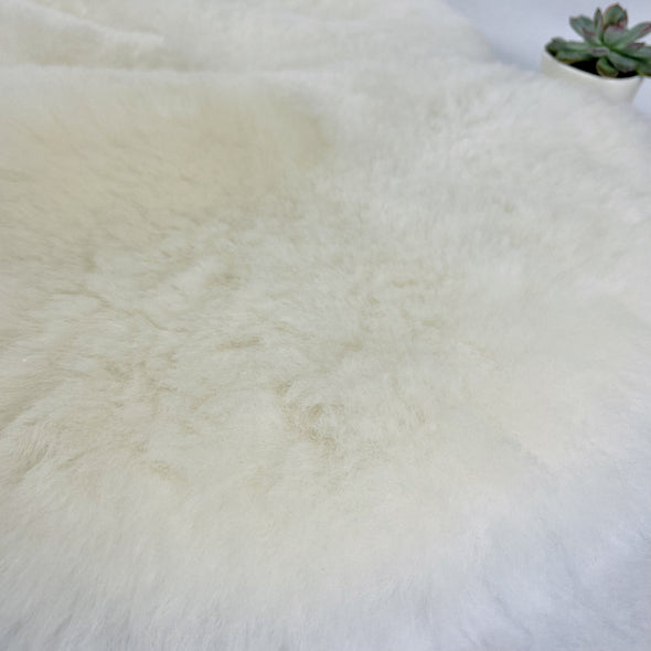 Premium Icelandic Sheepskin Rug Natural White Short Wool - Copia Cove Icelandic Sheep & Wool