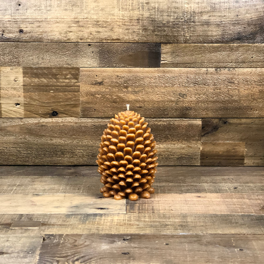 Pine Cone Beeswax Candle