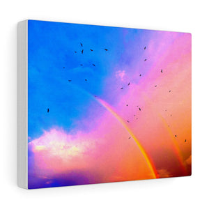 Colors of a Rainbow - wall Art